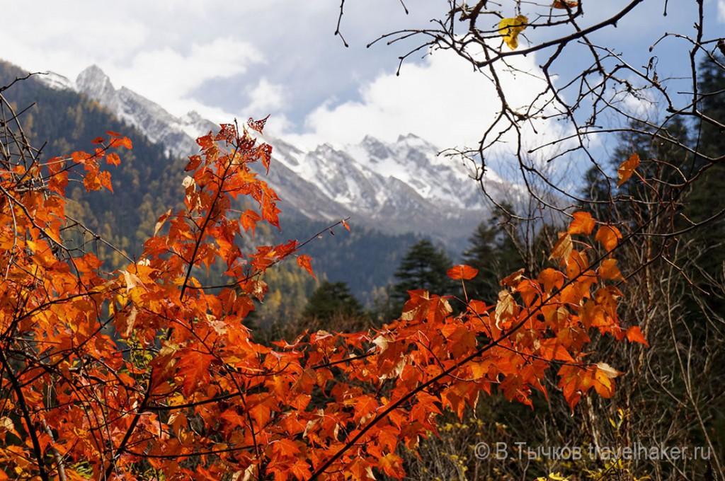 осень в цзючжайгоу