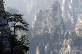 природа в чжанцзяцзе китай