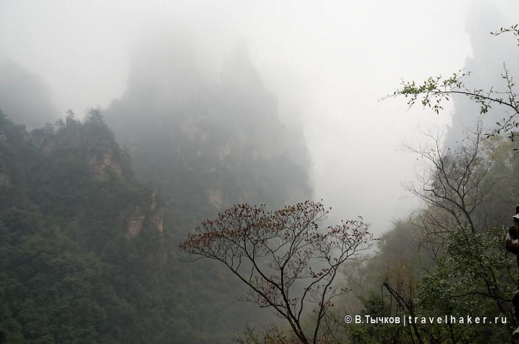 парящие горы чжанцзяцзе экскурсионный тур в китай