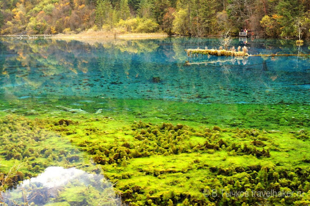 цветные озера цзючжайгоу