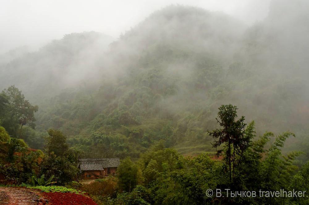 туманные холмы и джунгли в Китае