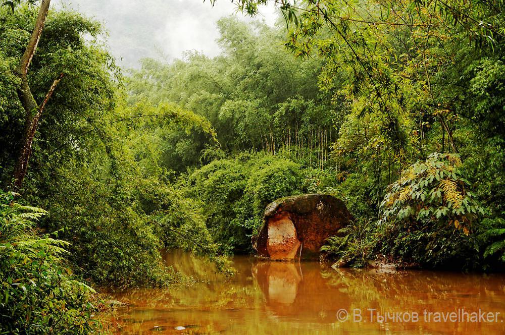 джунгли и красная река в ЧИшуи, Китай