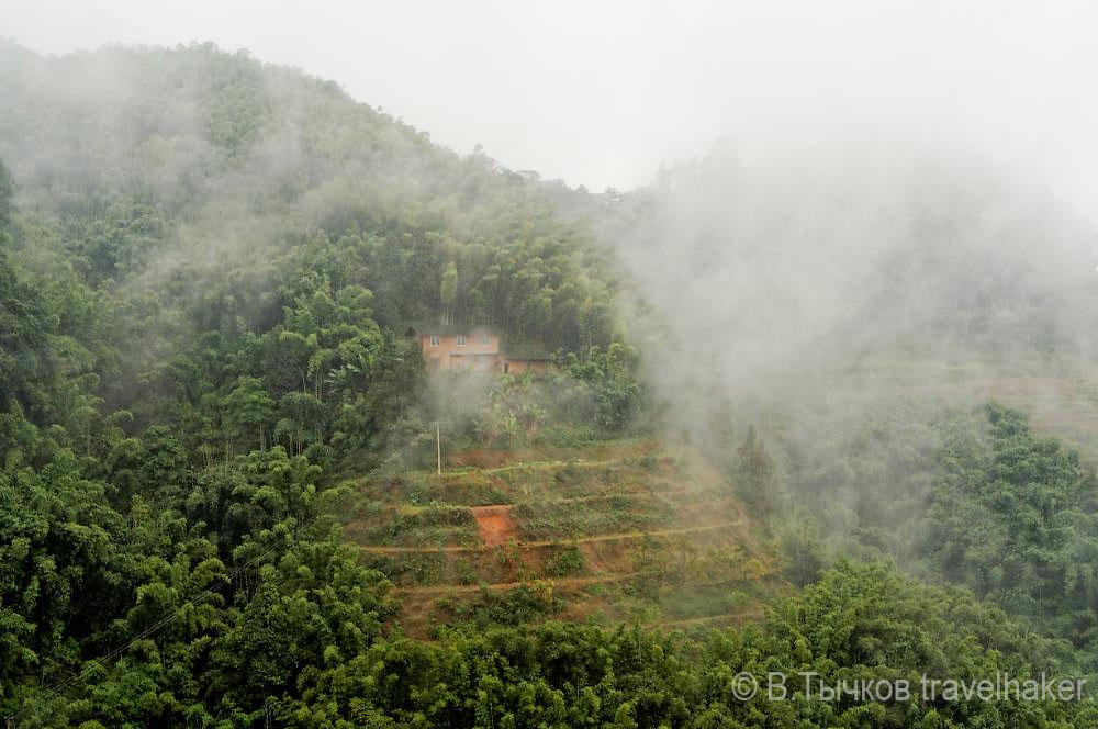 туман горы китай природа национальный парк