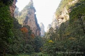 чжанцзяцзе национальный парк китай ущелье золотой кнут