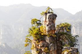 парящие горы чжанцзяцзе в китае