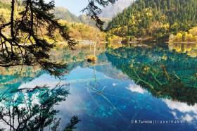 долина цзючжайгоу голубые озера лес осень озера в национальном парке в китае