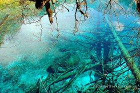 цзючжайгоу голубые озера лес осень озера в национальном парке в китае