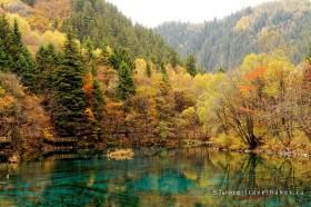 осенний лес и голубое озеро в парке цзючжайгоу китай