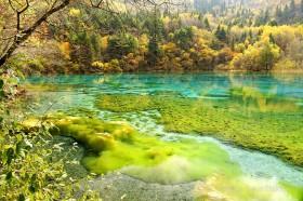 осенний лес и разноцветные озера в заповеднике цзючжайгоу китай