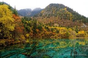 осень у озера в цзючжайгоу, осенний лес и горы в заповеднике