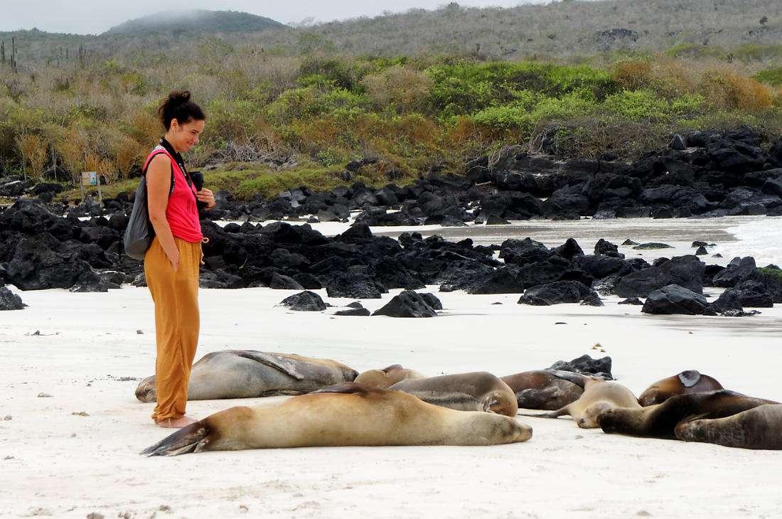 наши на пляже Пуэрто Чино, Сан Кристобаль, Галапагосы