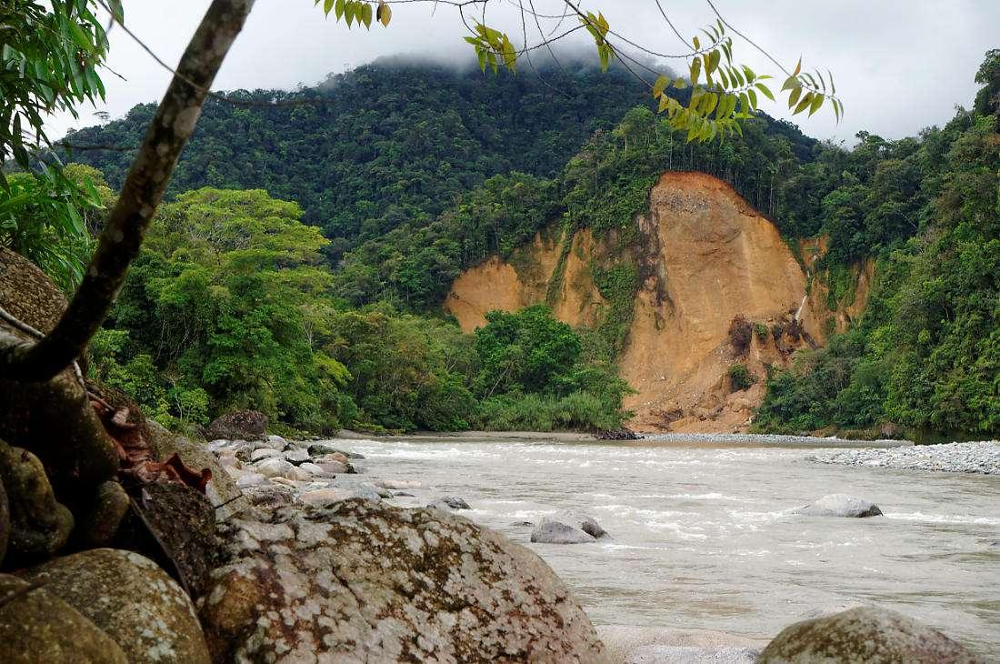 Река Хатуньяку, Тена, джунгли, Эквадор