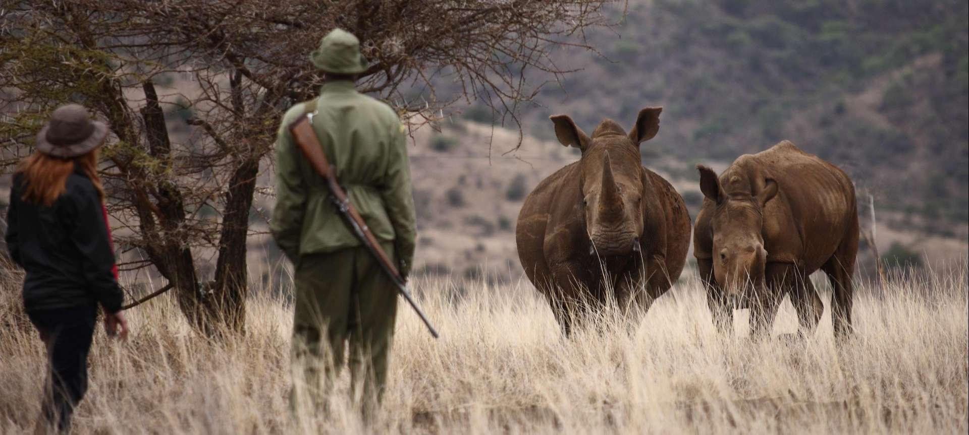 носорог сафари намибия